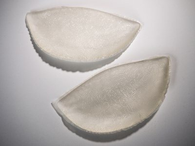A pair of transparent bra inserts